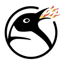 Agency Spotlight : Outstanding App Experience with Fire Breathing Penguin