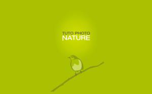 Showcase: Tuto Photo Nature